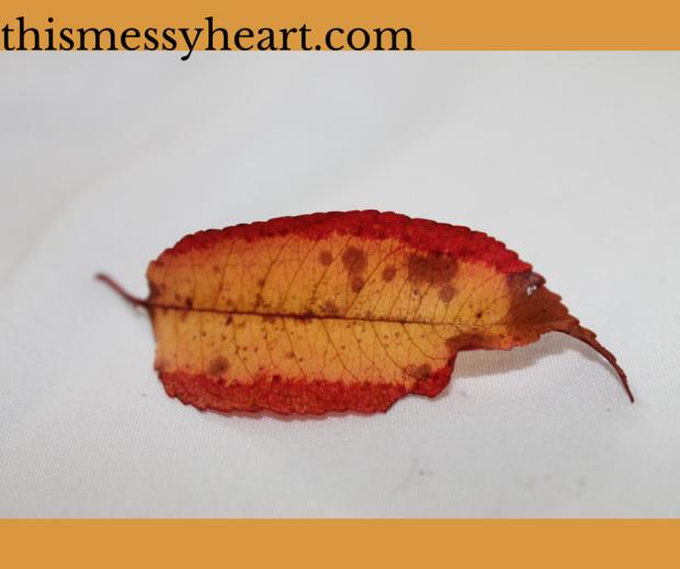 Leaf-Day 8